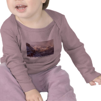 Baby LS T / Grand Canyon Winter Tees