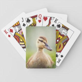 Baby Mallard Ducking Playing Cards