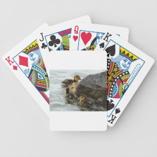 Baby Mallards Swimming around a Rock Bicycle Playing Cards