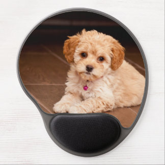 Baby Maltese poodle mix or maltipoo puppy dog Gel Mouse Pad