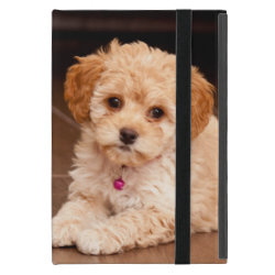 Powis iCase iPad Mini Case with Kickstand with Poodle Phone Cases design