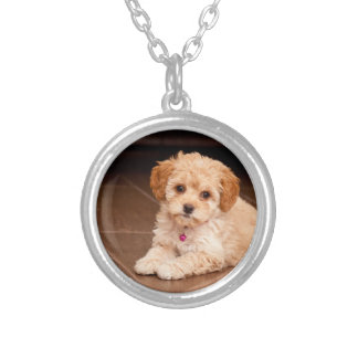 Baby Maltese poodle mix or maltipoo puppy dog Round Pendant Necklace