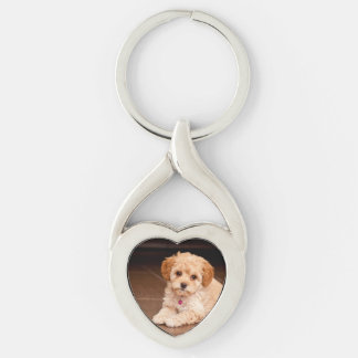 Baby Maltese poodle mix or maltipoo puppy dog Silver-Colored Heart-Shaped Metal Keychain