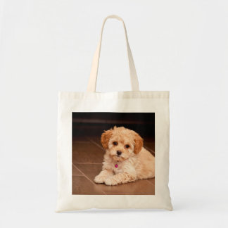 Baby Maltese poodle mix or maltipoo puppy dog Tote Bag