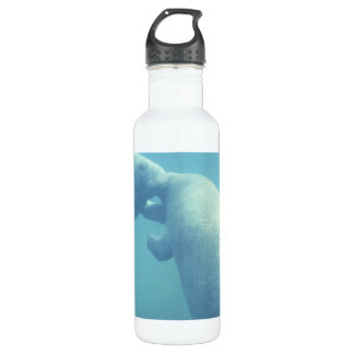 Baby Manatees 24oz Water Bottle