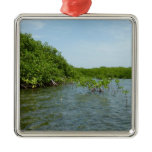 Baby Mangrove Trees Caribbean Nature Metal Ornament