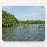 Baby Mangrove Trees Caribbean Nature Mouse Pad