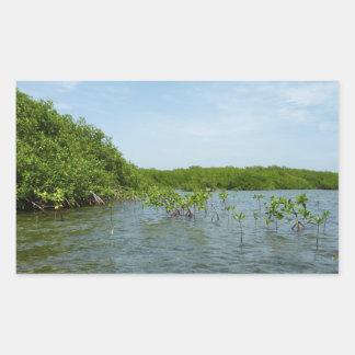 Baby Mangrove Trees Caribbean Nature Rectangular Sticker