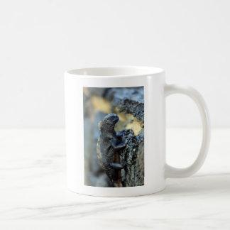 Baby marine iguana Galapagos Islands Coffee Mug