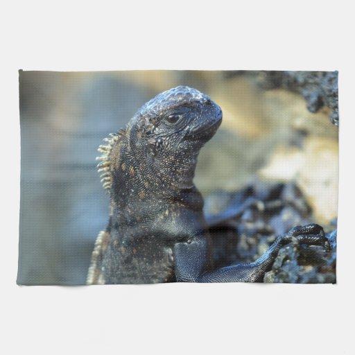 Baby marine iguana Galapagos Islands Hand Towel