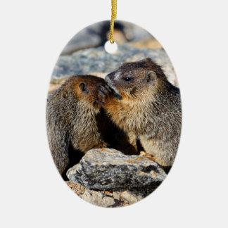 Baby Marmots Ceramic Ornament