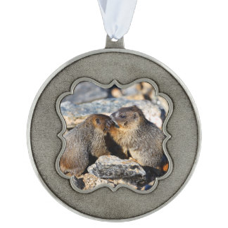 Baby Marmots Pewter Ornament