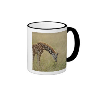 Baby Masai Giraffe, Giraffa camelopardalis Ringer Coffee Mug