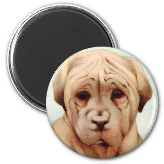 Baby Mastiff - SUPER CUTE ! 2 Inch Round Magnet