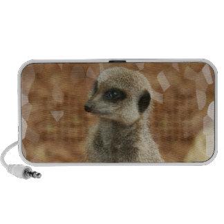 Baby Meerkat Speakers
