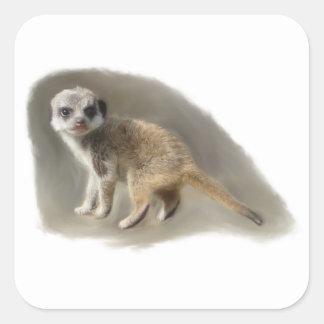 baby meerkat square sticker