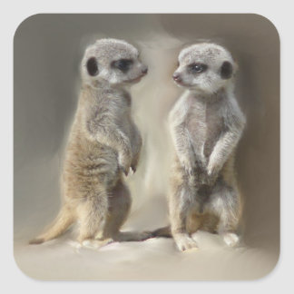baby meerkats square sticker