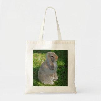 Baby Minilop Rabbit Bag