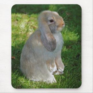 Baby Minilop Rabbit Mousemat Mouse Pad