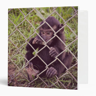 Baby Monkey Binder
