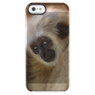 Baby Monkey Iphone Cover Funda Clearly™ Deflector Para iPhone 5 De Uncommon