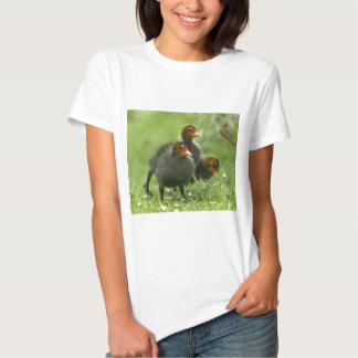 Baby Moorhens, England. T Shirt