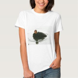 Baby Moorhens T Shirt