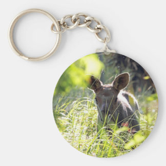 Baby Moose Key Chain