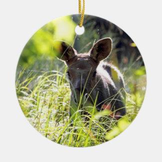 Baby Moose Ornament