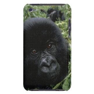 baby_mountain_gorilla_wallpaper_baby_animals_anima iPod touch case