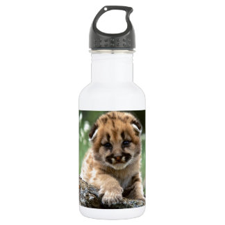 Baby Mountain Lion Cub Water Bottle