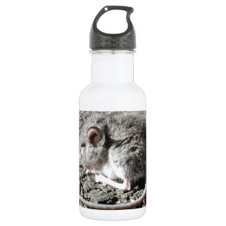 Baby Mouse Water Bottle