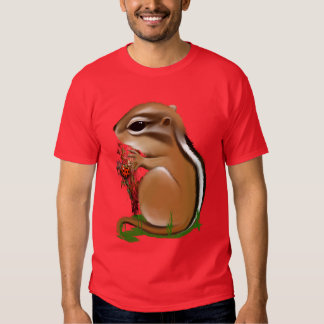 *Baby Munk and Ladybug T Shirt
