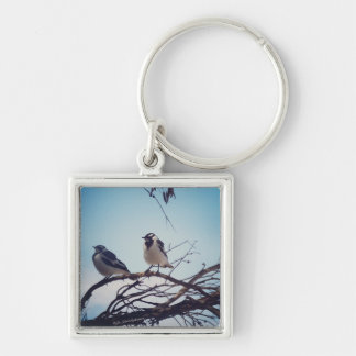 baby murray magpies Silver-Colored square keychain