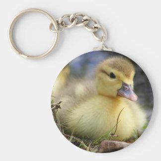 Baby Muscovy duckling Keychain