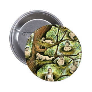 Baby Nests in Trees Pinback Button