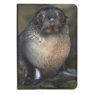 Baby New Zealand Fur Seal Kindle 4 Cover