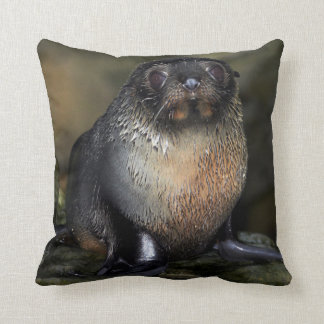 Baby New Zealand Fur Seal Throw Pillow