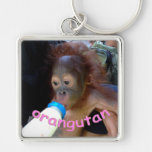 Baby Orangutan Drinks Bottle Silver-Colored Square Keychain