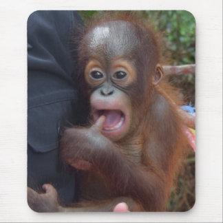 Baby Orangutan in Borneo Mouse Pad