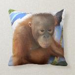 Baby Orangutan Lear Pillow