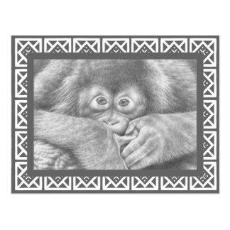 Baby Orangutan Postcard