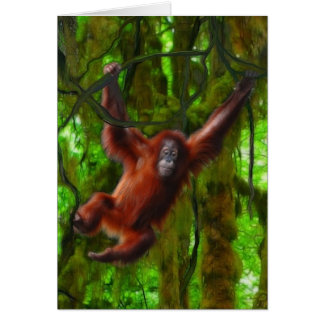 Baby Orangutan & Rainforest Primate Art Gift Card