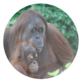 Baby Orangutan with Mother Plate