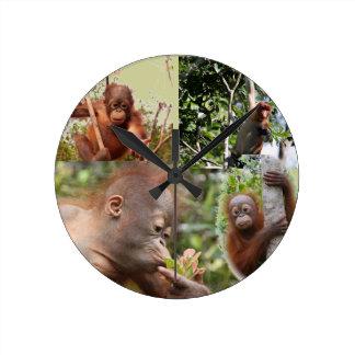 Baby Orangutans and Monkey Round Clock