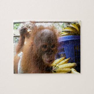 Baby Orangutans Banana Raid Jigsaw Puzzle