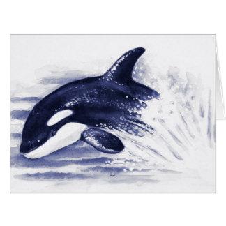 Baby Orca Jump Card