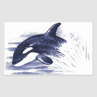Baby Orca Jump Rectangular Sticker