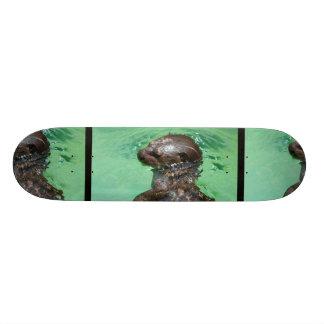 Baby Otter  Skateboard