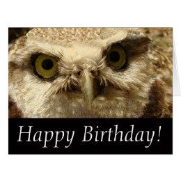 Baby Owl Bird Wildlife Animal Big Greeting Card